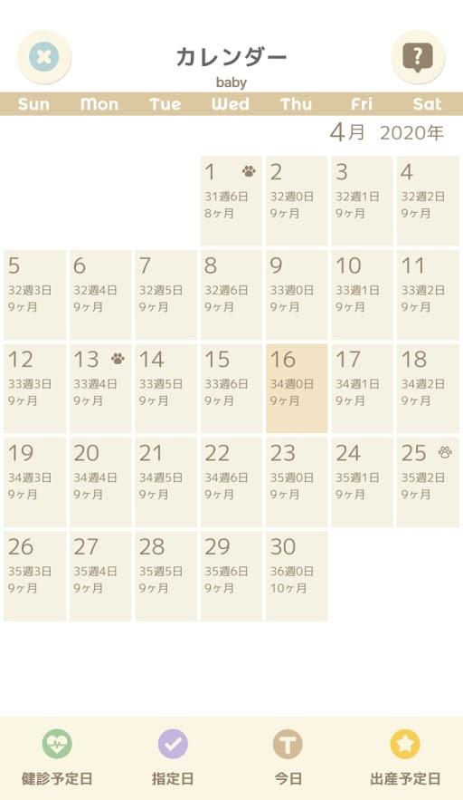 妊娠 周期 カレンダー